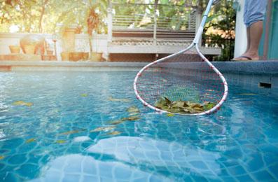 Pool Clean-1